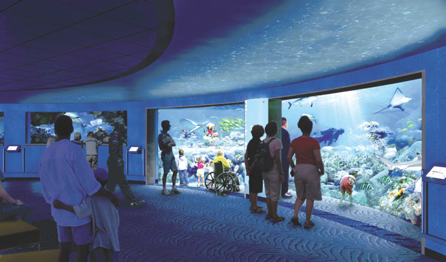 The Big 216 News/ Akron zoo
