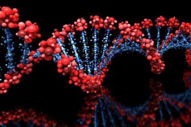 Genetic Report Cards