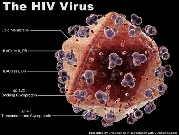 New Innovation in HIV Treatment