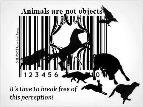 Animals are NOT objects