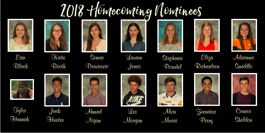 Vote+for+homecoming+king+and+queen...