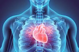 Heart Disease Kills Thousands
