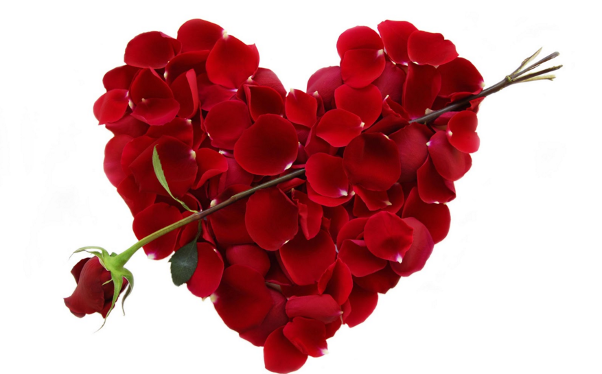 Valentine%27s+Day+Can+Truly+Be+Great+For+Everyone