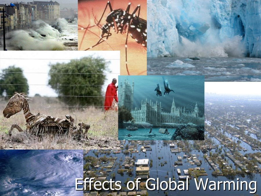 Global Warming Effects