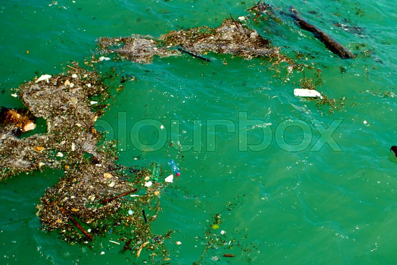 Our Oceans Are Dirty, and Nobody Gives A Sh!%