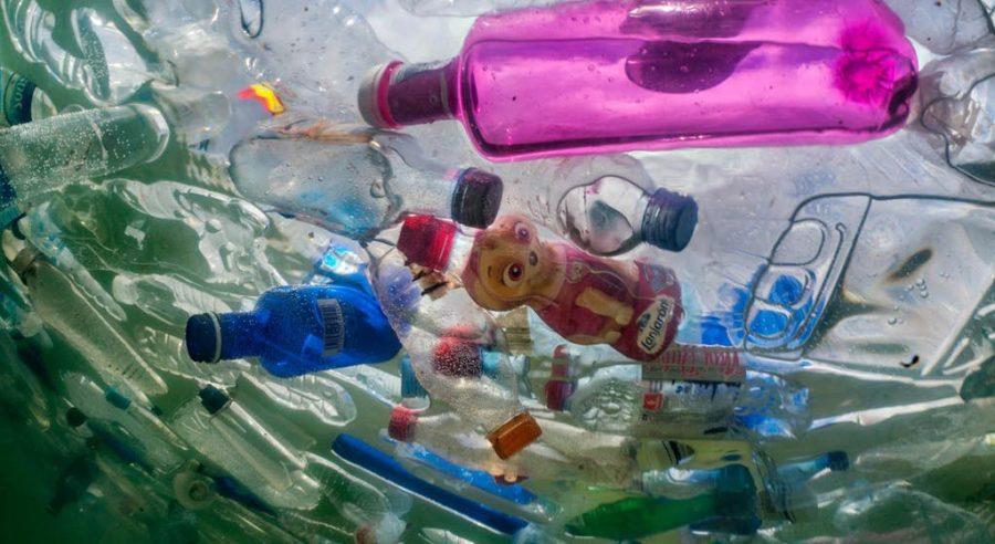 Plastic Epidemic