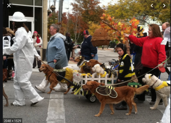 Lakewood Annual Spooky Pooch Parade Coming Up