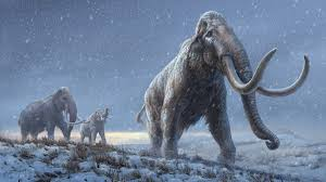 Oldest DNA Sequence Reveals New Species of Mammoth